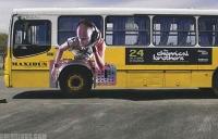 bus-ads-4-1.jpg