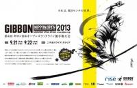 第4回 日本オープンスラックライン選手権大会  二子玉川ライズ ガレリア  JSFed  Japan Slackline Federation  日本スラックライン連盟.jpg